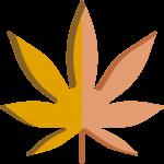 logo 2 p